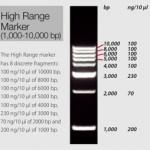 High Range Marker