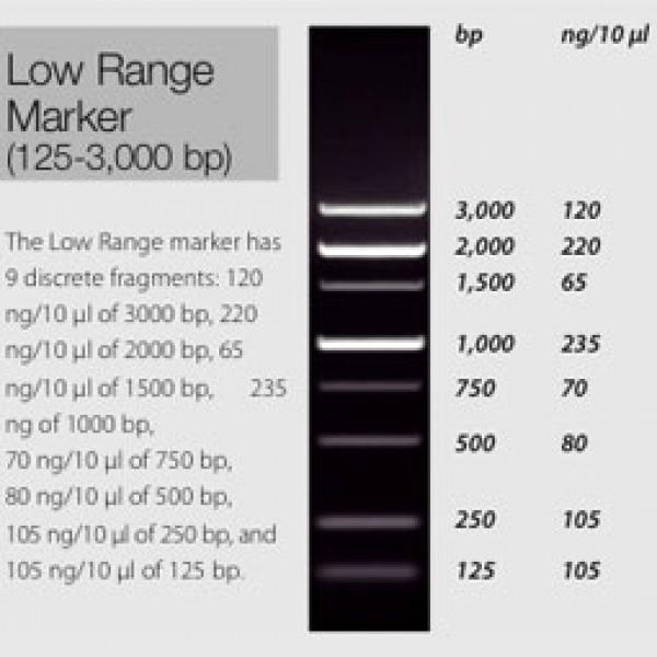 Low Range Marker